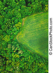 Aerial View Spring Summer Green Field And Forest Landscape. Top View Of Field And Forest. Bird's Eye View.