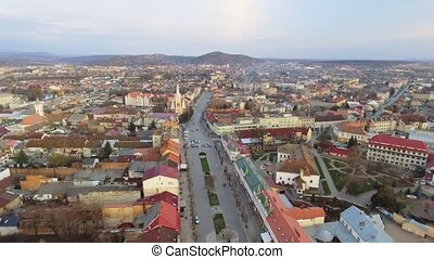 Aerial view St. Martin of Tours Cathedral, Mukacheve....