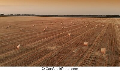 Aerial view straw bales on field - Twisted haystack on...