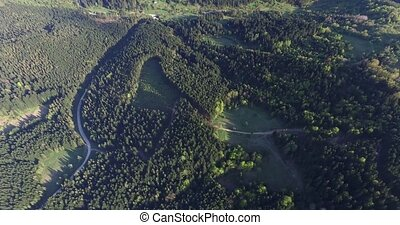 Aerial view. Summer rolling hills with green tops