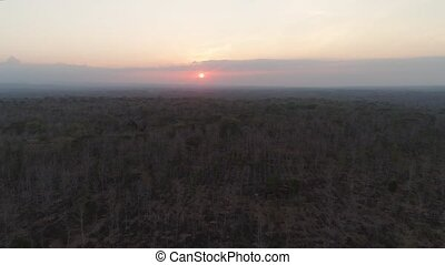 aerial view sunset over savannah forest. foothill rainforest at sunset time. sunset over the savanna landscape java, indonesia.