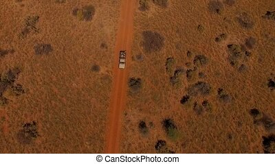 Aerial view: suv with people traveling on the road in the savannah of Namibia.