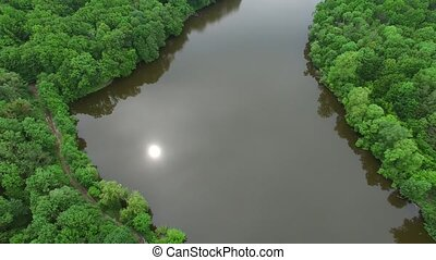 Aerial view the river on green forest plain..