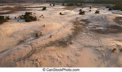 Aerial view to Ukrainian desert near Kitsevka, Kharkiv region. Pine forest and sand dester after soil erosion at sunset.