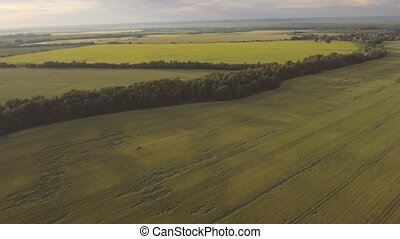 Aerial view:Flying over green field. - Aerial view:Flying...