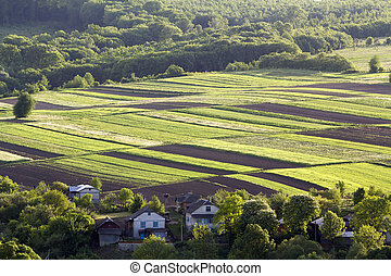Aerial wide rural spring panorama of colorful rectangular plowed and green fields lit by sun surrounded by dense forest and village cottages between orchards. Beauty and harmony of nature concept.