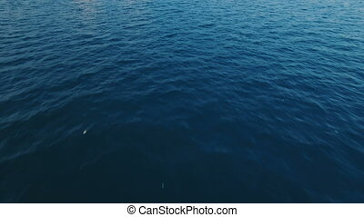 Aerial Wide Shot POV View of Birds Flying Over the Waves in the Mediterranean Sea, Shot in 4K UHD