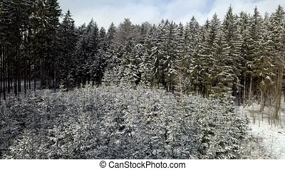 aerial winter landscape - Flying over the snowy forest,...