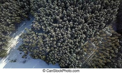 aerial winter landscape - Flying over the snowy forest, top...