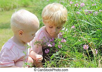 af het breken bloemen, broers