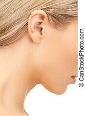afbeelding, oor, van een vrouw