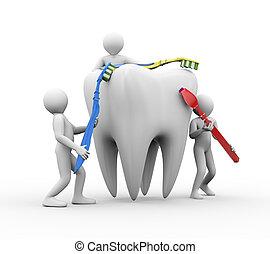 afborstelen, mannen, 3d, tand