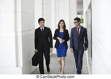 affari asiatici, colleghi, camminare, esterno.