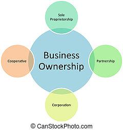 affari, proprietà, amministrazione, diagramma
