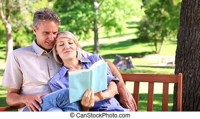 Affectionate couple sitting on park bench reading on a sunny...