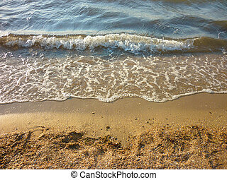Affectionate sea wave on a sandy beach