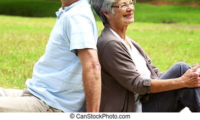 Affectionate senior couple relaxing in the park on a sunny...