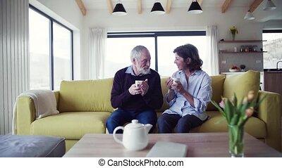 affectueux, amour, séance, sofa, couple, intérieur, parler.,...