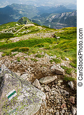 affichage montagne, sommets, piste