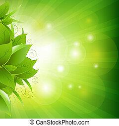 affiche, feuilles, herbe, vert
