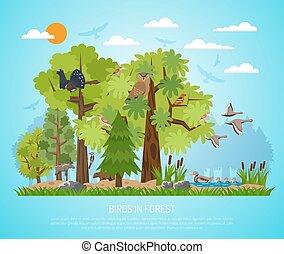 affiche, forêt, oiseaux