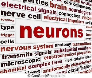 affiche, neurons, scientifique, mots
