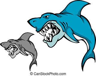 affilato, squalo, pericolo, dente