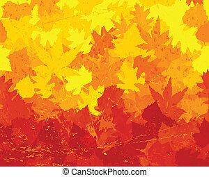 afflitto, autunno parte, carta da parati