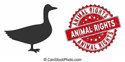 afflizione, animale, oca, diritti, icona, francobollo