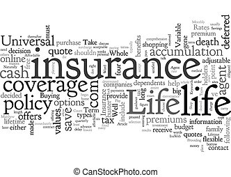 Affordable Life Insurance text background wordcloud concept