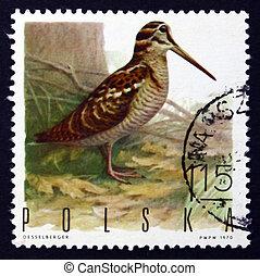 affranchissement, bécasse, timbre, pologne, 1970, oiseau jeu