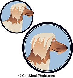 Afghan hound head in circle