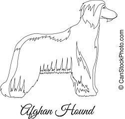 Afghan hound outline