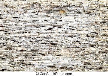 afligido, rústico, madeira, resistido