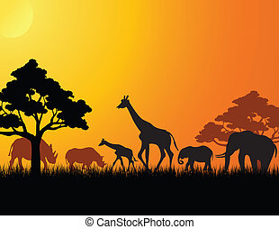 africa, animale, silhouette