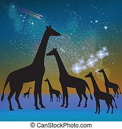 Africa Giraffe Silhouette