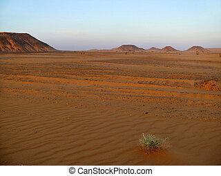 Mountains in the Sahara desert.