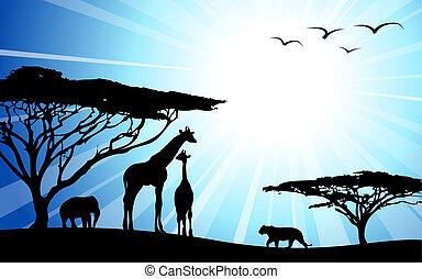 Africa / safari - silhouettes