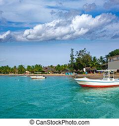 Africa Saly Senegal hot spot of sailfish fishing - Africa...