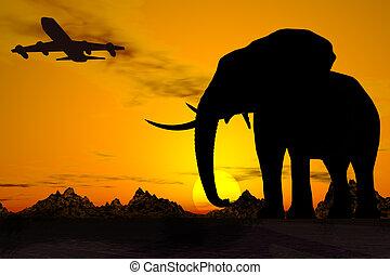 africa, travel.