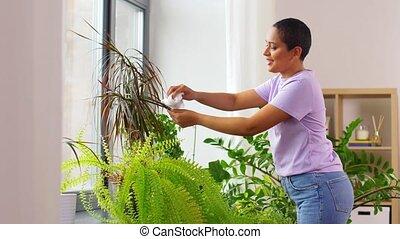 africaine, heureux, américain, nettoyage, houseplant, femme