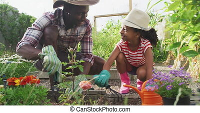 African american father and daughter gardening together - ...