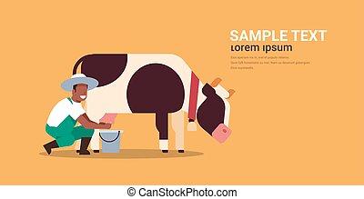 african american male farmer milking cow in bucket farm domestic animal cattle fresh milk concept flat orange background horizontal copy space