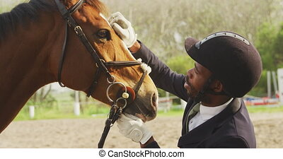 African American man caressing his Dressage horse - Side ...