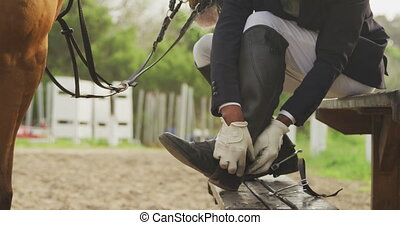 African American man preparing to ride a Dressage horse - ...