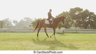African American man riding his Dressage horse - Side view ...