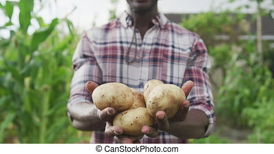 African American man showing potatoes at the camera - Front ...