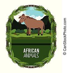 African animals cartoon