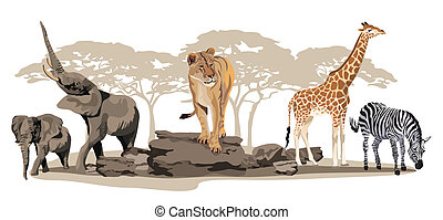 African Animals - Illustration of African animals on...