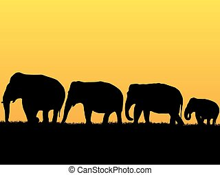 African background with elephants